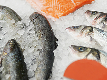 LIBERO ITS_App_Seafood_TTis_400x300pxs
